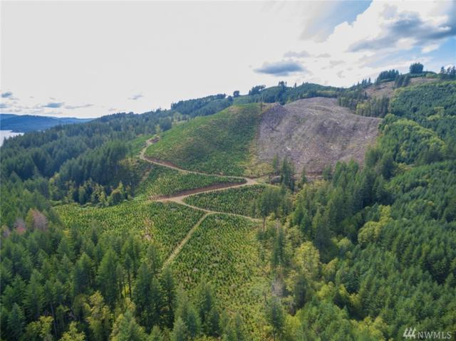 0 Lewis River Rd, Cougar, WA 98616 (#1366276) :: Real Estate Solutions Group