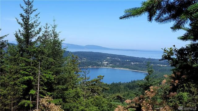 4-(lot #) Hidden Ridge Trail, Orcas Island, WA 98245 (#1366337) :: Costello Team