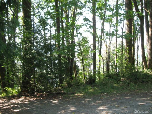 0 Old Day Creek Rd, Sedro Woolley, WA 98284 (#1366572) :: Alchemy Real Estate