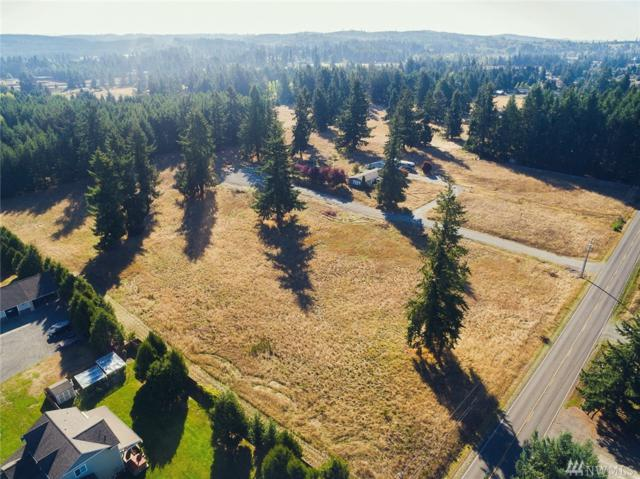 18422 Guava St SW, Rochester, WA 98579 (#1366861) :: NW Home Experts