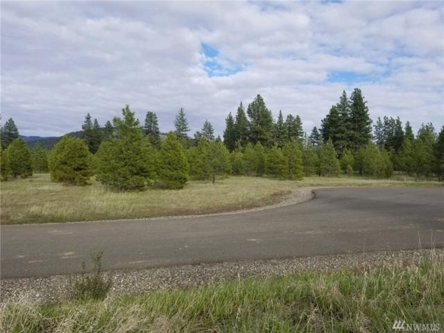 859 (Lot 7) Leo Lane, Cle Elum, WA 98922 (#1366872) :: Better Homes and Gardens Real Estate McKenzie Group