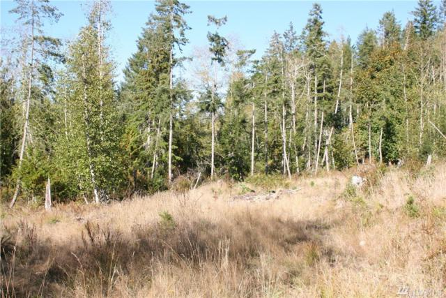 35 E Go Onna Rd, Quilcene, WA 98376 (#1367003) :: Real Estate Solutions Group