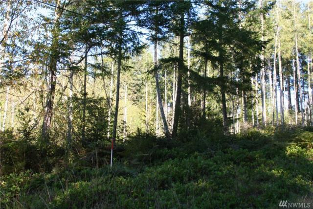 3 E Go Onna Rd, Quilcene, WA 98376 (#1367004) :: Real Estate Solutions Group