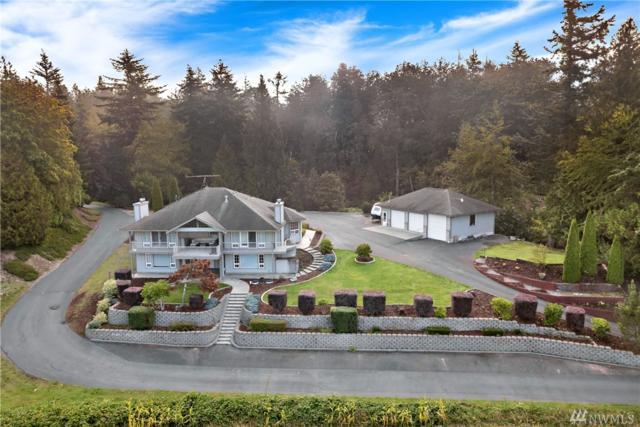3342 Alm Rd, Everson, WA 98247 (#1368090) :: Icon Real Estate Group