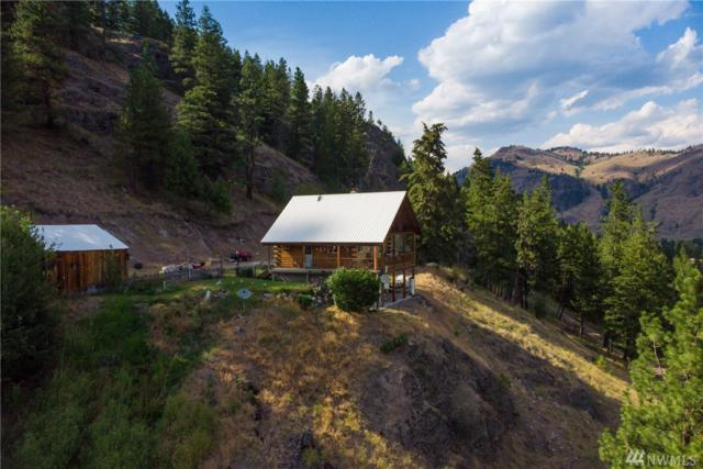 381 Kroupa Rd, Curlew, WA 99118 (#1368238) :: Costello Team