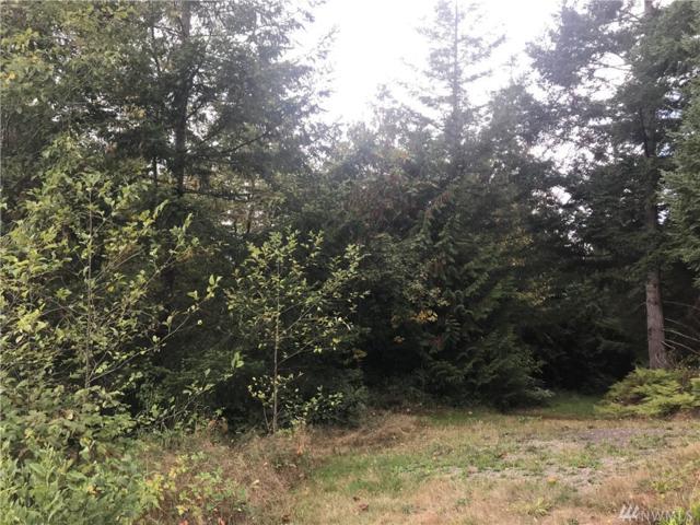 0 Kodiak Lane, Chehalis, WA 98532 (#1368788) :: Mike & Sandi Nelson Real Estate