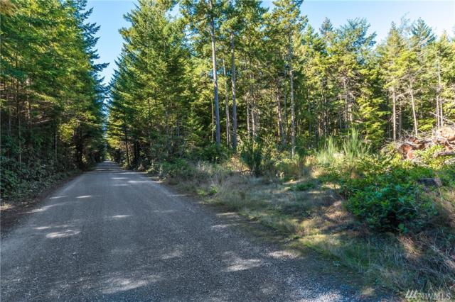 0-Lot B Winterhawk Lane, Coupeville, WA 98239 (#1368947) :: Icon Real Estate Group
