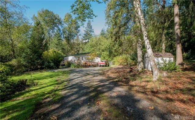 9387 Owl Lane, Blaine, WA 98230 (#1368975) :: Mike & Sandi Nelson Real Estate