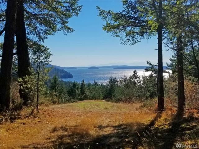538-A & B Olga Cemetery Rd, Orcas Island, WA 98279 (#1369084) :: Real Estate Solutions Group