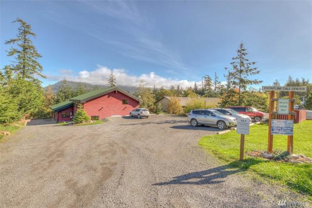 9 Hope Lane, Orcas Island, WA 98245 (#1369104) :: Kimberly Gartland Group