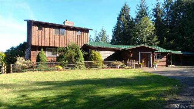 105 Strawberry Hill Rd, Elma, WA 98541 (#1369606) :: Real Estate Solutions Group
