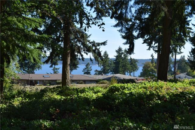 254 Cedarview Dr, Port Townsend, WA 98368 (#1370059) :: Crutcher Dennis - My Puget Sound Homes