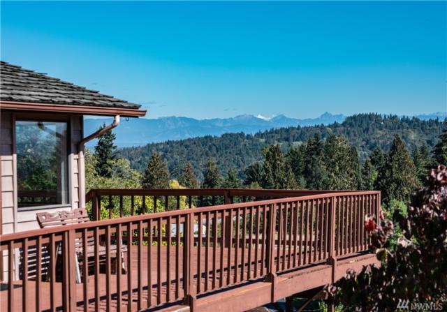 15931 95th Ave SE, Snohomish, WA 98296 (#1370219) :: Real Estate Solutions Group