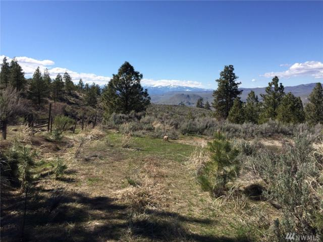 0-XX Whitley Canyon, Brewster, WA 98812 (#1370652) :: Real Estate Solutions Group