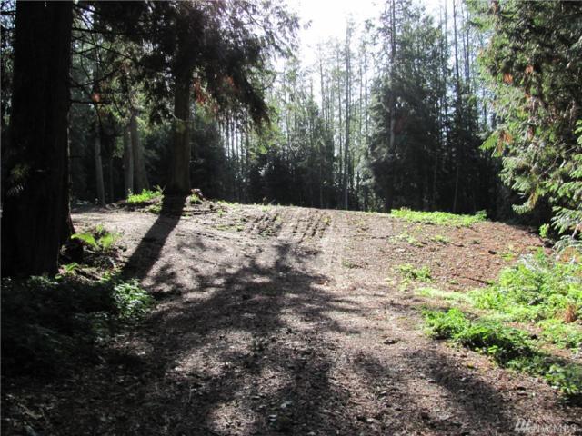 760 Sandell Rd, Camano Island, WA 98282 (#1370770) :: Keller Williams Realty Greater Seattle