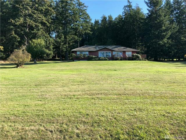6 Butler Wy, Lopez Island, WA 98261 (#1371072) :: Ben Kinney Real Estate Team