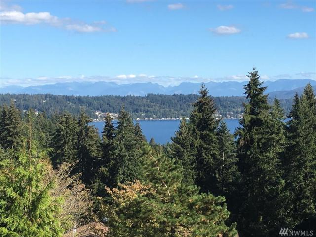 3424 161st Ct SE #45, Bellevue, WA 98008 (#1371095) :: The DiBello Real Estate Group