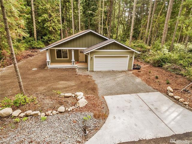 10704 106th St Ct, Anderson Island, WA 98303 (#1371174) :: Mike & Sandi Nelson Real Estate
