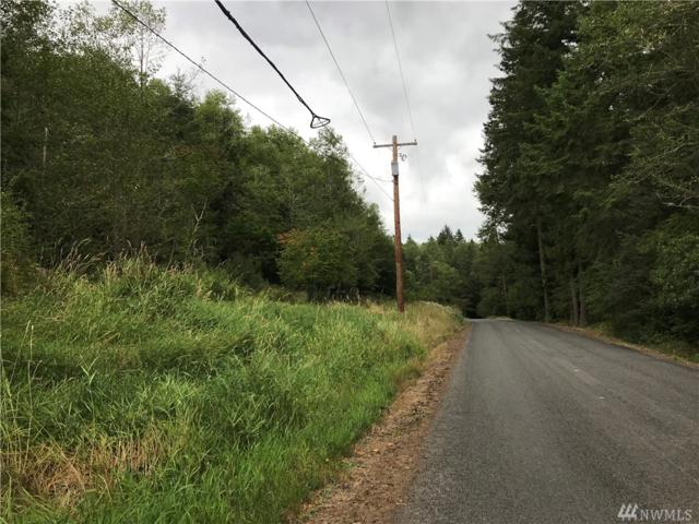 15107 Scott Turner Rd E, Eatonville, WA 98328 (#1371368) :: Ben Kinney Real Estate Team