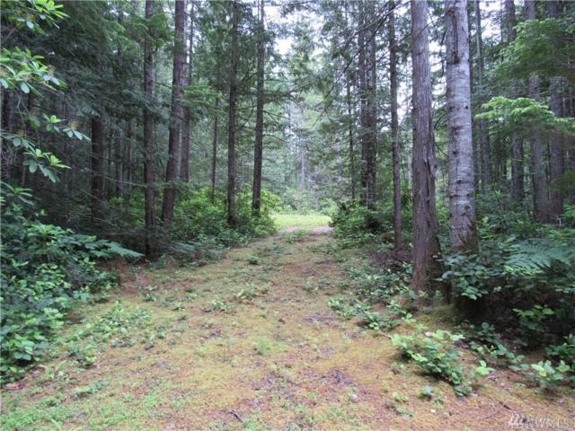 2-.53acres NW Morning Star Lane, Seabeck, WA 98380 (#1371406) :: Homes on the Sound