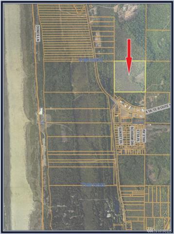 0-xxx Hale St, Hoquiam, WA 98550 (#1371617) :: Crutcher Dennis - My Puget Sound Homes