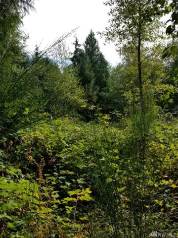 3 Weyers Lane SW, Port Orchard, WA 98367 (#1371653) :: Homes on the Sound