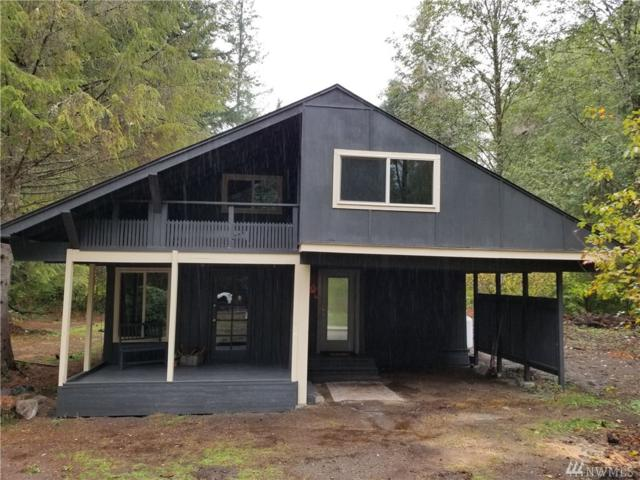 317 Skate Creek Rd, Ashford, WA 98304 (#1371708) :: The Home Experience Group Powered by Keller Williams