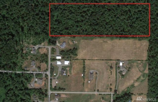 5100 Mission Rd, Bellingham, WA 98226 (#1371738) :: Kimberly Gartland Group