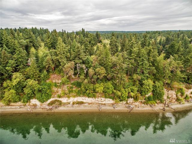 0 150th Ave, Anderson Island, WA 98303 (#1371939) :: The Royston Team