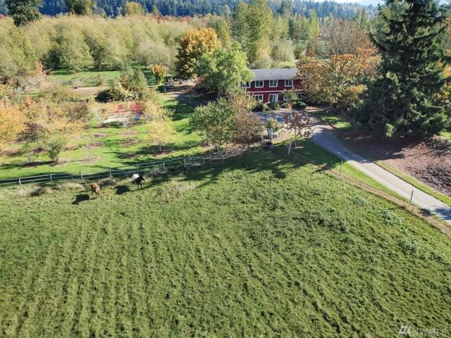 46128 276th Ave SE, Enumclaw, WA 98022 (#1372262) :: Better Homes and Gardens Real Estate McKenzie Group