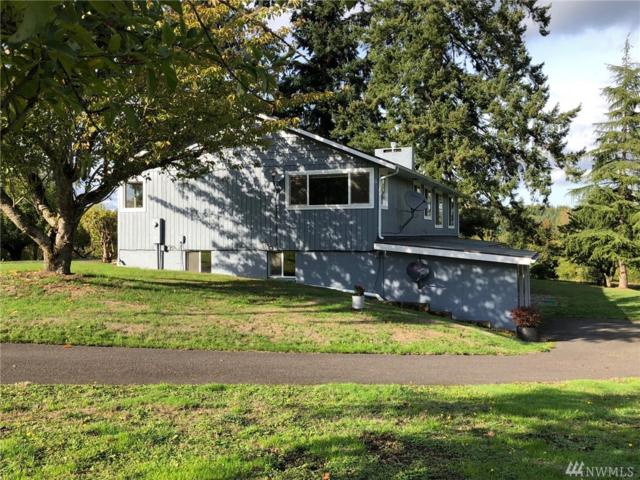 13900 Peterson Rd SW, Tenino, WA 98589 (#1372347) :: Kimberly Gartland Group