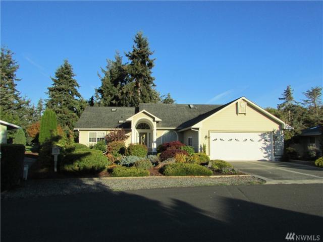 214 Hurricane Ridge Dr, Sequim, WA 98382 (#1372403) :: Real Estate Solutions Group
