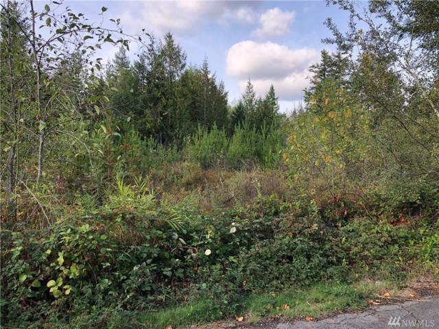 0-XXXX Black Lake Belmore Rd SW, Olympia, WA 98512 (#1372408) :: Canterwood Real Estate Team