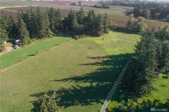 0 Aldrich Rd, Ferndale, WA 98248 (#1372655) :: Real Estate Solutions Group