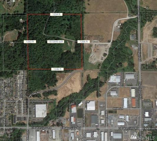 0 Irongate Rd, Bellingham, WA 98226 (#1373020) :: Homes on the Sound