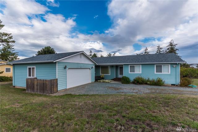 794 Gem Ct, Oak Harbor, WA 98277 (#1373203) :: Ben Kinney Real Estate Team