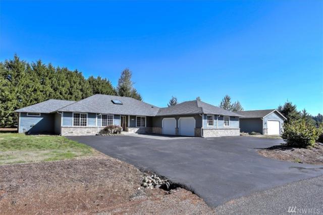 10010 35th Lane SE, Olympia, WA 98513 (#1373316) :: Chris Cross Real Estate Group