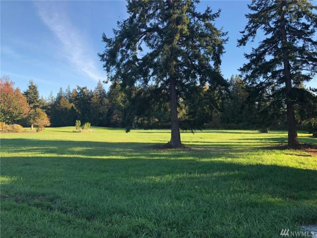 13340 Bridgeview Wy, Mount Vernon, WA 98273 (#1373384) :: Real Estate Solutions Group
