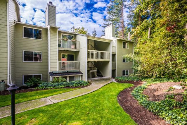 9494 Redmond-Woodinville Rd NE B204e, Redmond, WA 98052 (#1373519) :: Mike & Sandi Nelson Real Estate