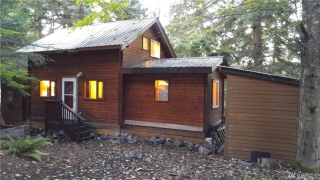 1190 Scenic Ave, Lummi Island, WA 98262 (#1373744) :: Real Estate Solutions Group