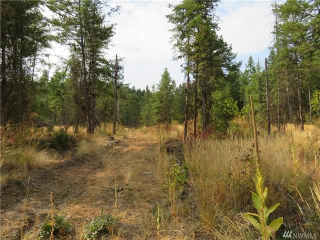 0-West Empire Creek Rd, Malo, WA 99150 (#1374085) :: Homes on the Sound