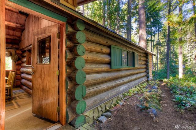 18 Deep Creek Usfs, Greenwater, WA 98022 (#1374119) :: Real Estate Solutions Group