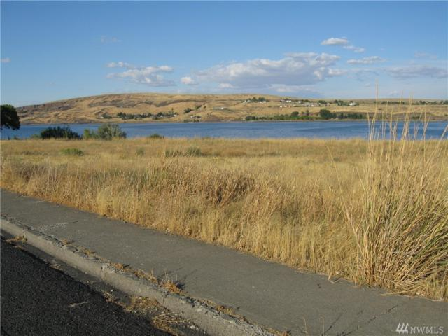 0-Lot B N Fir St, Soap Lake, WA 98851 (#1374250) :: Homes on the Sound