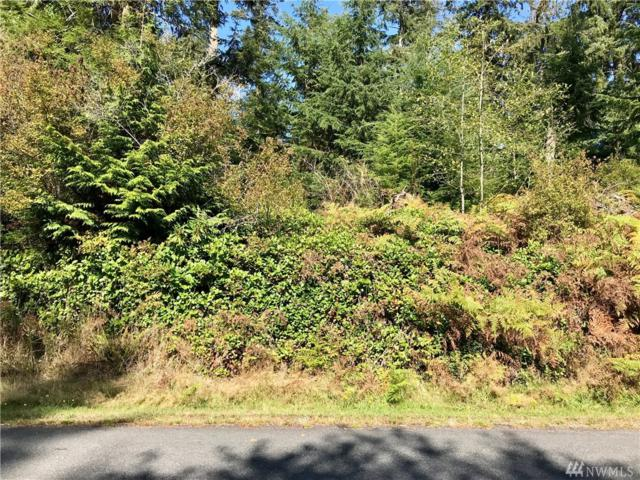 0 Lot 36 Sycamore Road, Coupeville, WA 98239 (#1374362) :: Kimberly Gartland Group