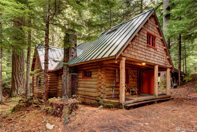 96 Silver Creek - Usfs Cabin, Greenwater, WA 98022 (#1374418) :: Real Estate Solutions Group