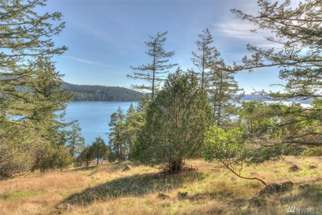 1022 Deer Harbor Rd, Orcas Island, WA 98245 (#1374462) :: Kimberly Gartland Group