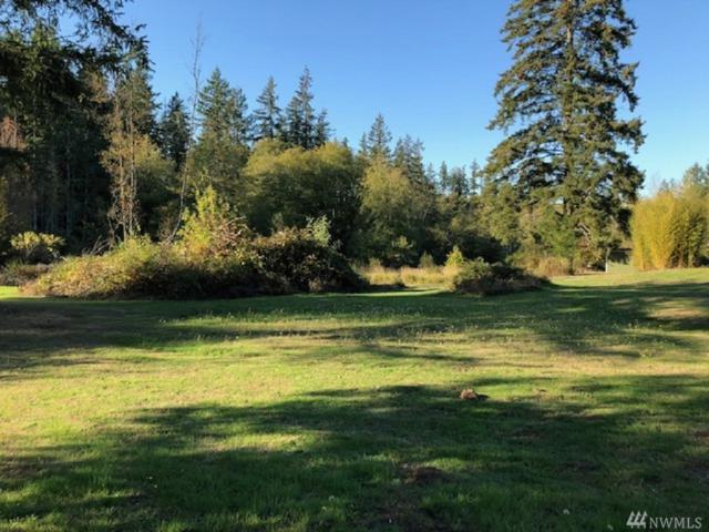 10419 State Route 302 NW, Gig Harbor, WA 98329 (#1374480) :: Real Estate Solutions Group