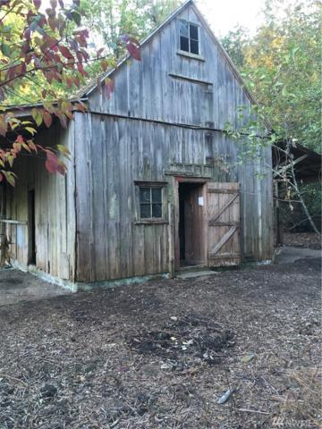 6119 E Hilldale Rd, Port Orchard, WA 98366 (#1374624) :: Real Estate Solutions Group