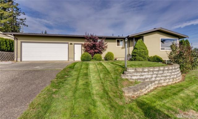 1472 Kamm Rd, Lynden, WA 98264 (#1374643) :: Ben Kinney Real Estate Team