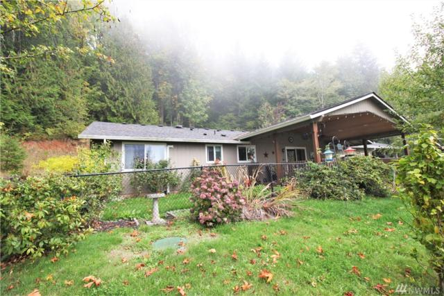 41 Creekside Lane, Oakville, WA 98568 (#1374685) :: Real Estate Solutions Group